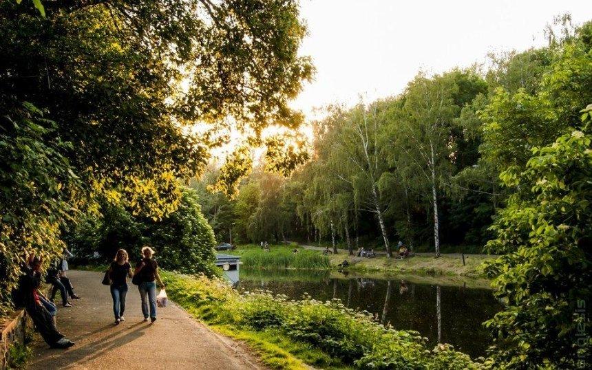 Зеленый город: в столице появятся 15 новых скверов и парк