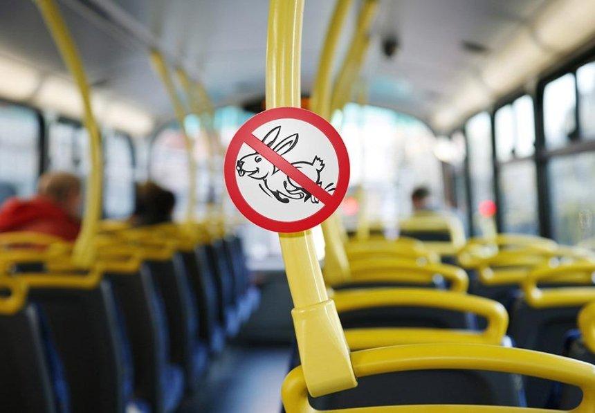 Зайцам нет: в Киеве предложили увеличить штрафы за безбилетный проезд в несколько раз
