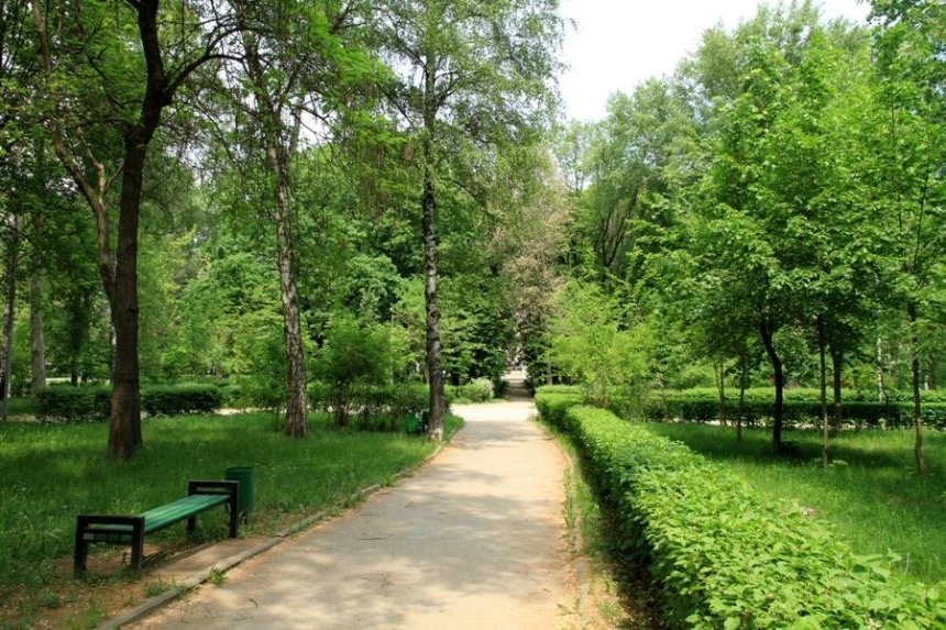 В Киеве появятся 17 новых скверов и парк