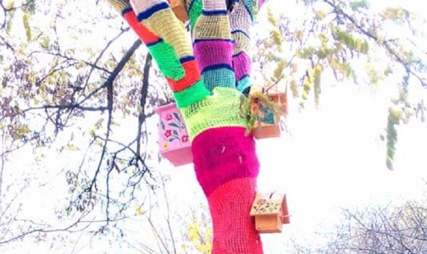 Жители Позняков одели деревья вразноцветные «свитера» (фото)