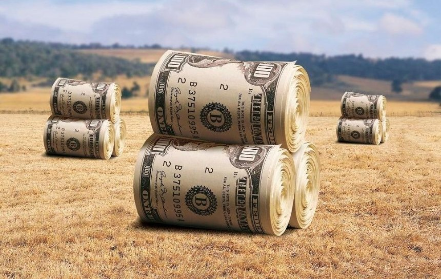 В Украине запустили земельные аукционы через Prozorro