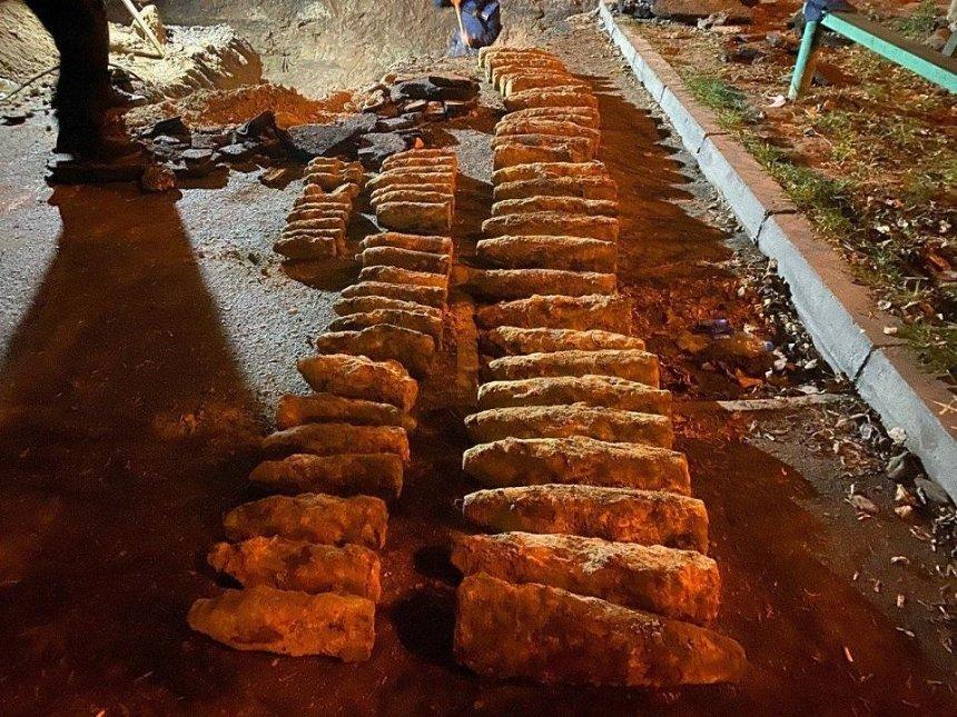 Рядом с Шулявским мостом обнаружили более сотни боеприпасов (фото)
