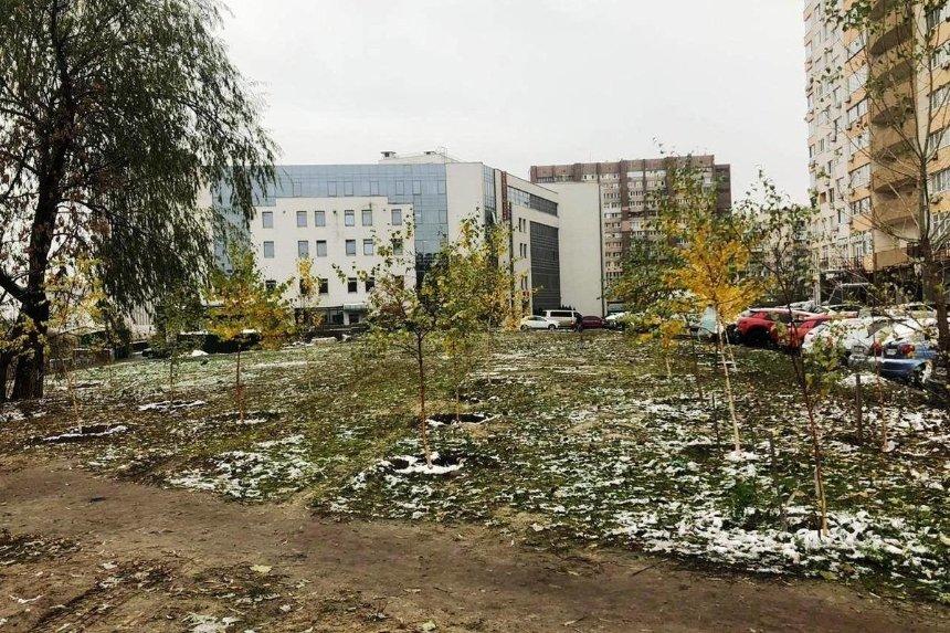 ВГолосеевском районе появится новый сквер: что там будет