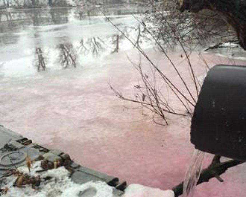 Киевская река стала розовой из-за загадочных химикатов (фото)