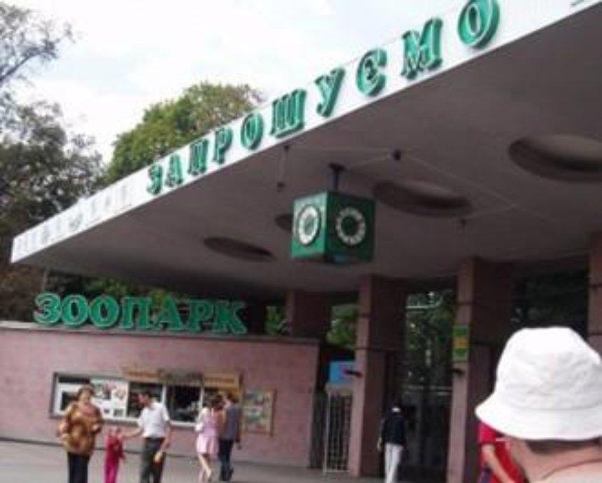 В Киеве поймали грабителей зоопарка