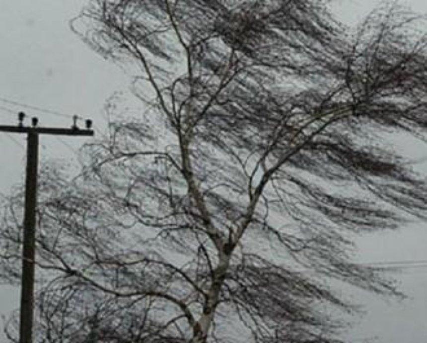 Сегодня в Киеве объявлено штормовое предупреждение
