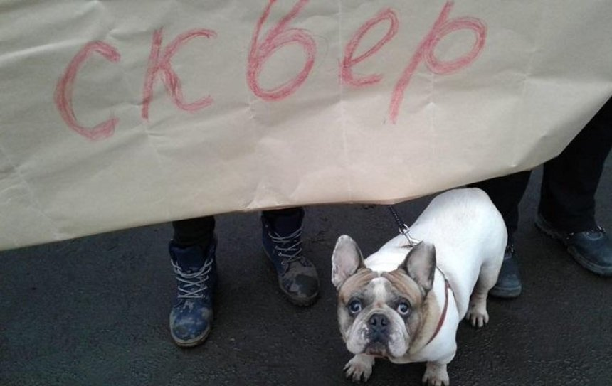 Жители Березняков вышли на защиту сквера (фото)