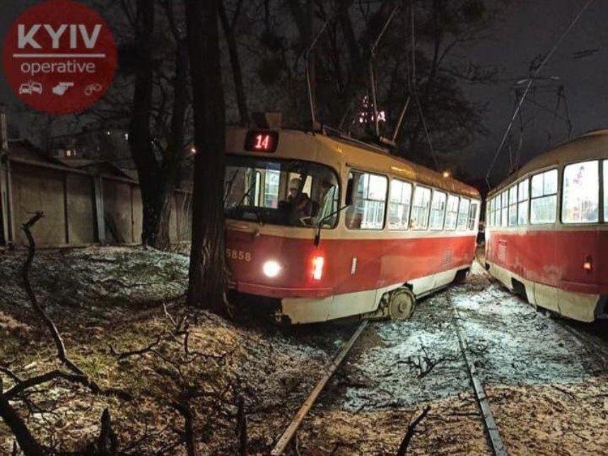 Возле Берестейской трамвай врезался в дерево (фото)