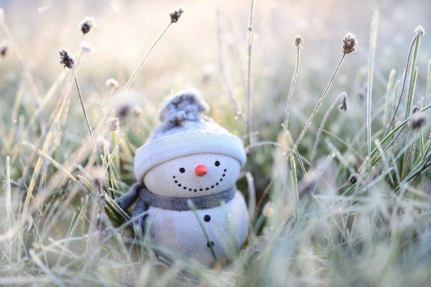 В Японии создали чехол для снеговиков