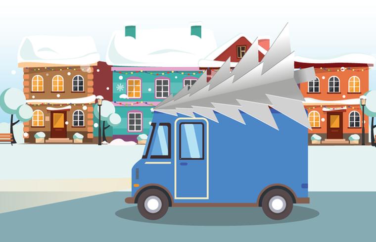 Как отвезти елку на переработку: эко-предложение от Vanongo