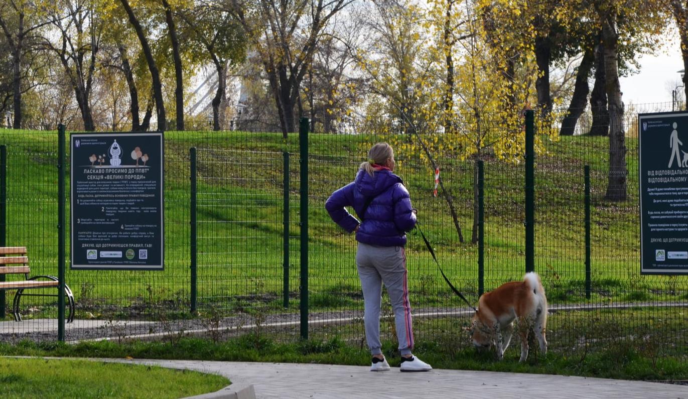 В Киеве обустраивают площадки для выгула собак: адреса